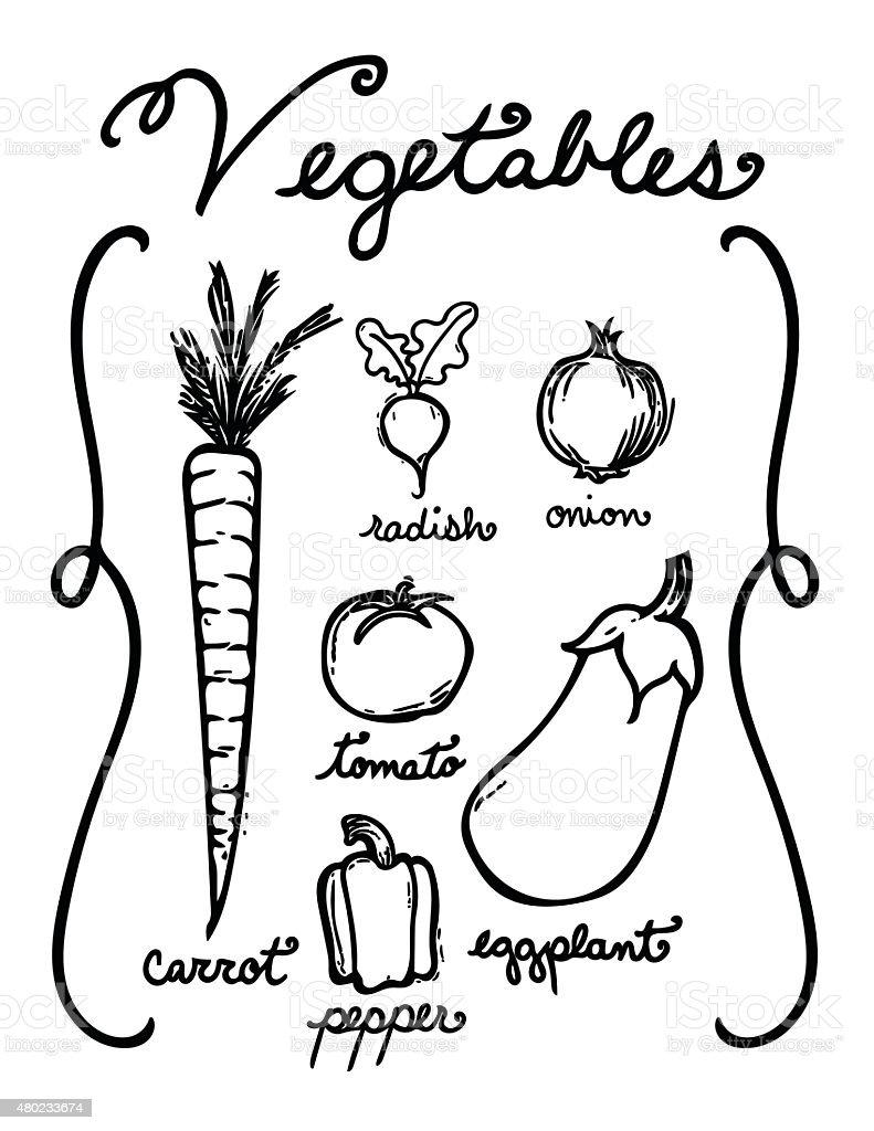 Hand Drawn Vegetables vector art illustration