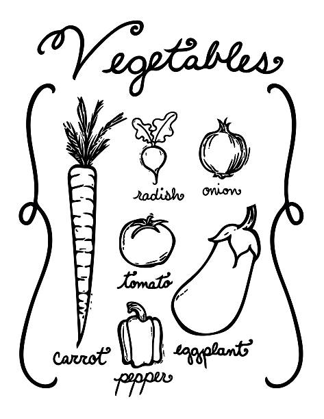 Hand Drawn Vegetables vector art illustration