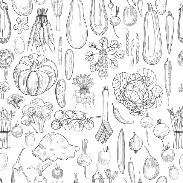 Hand drawn vegetables .  Vector seamless pattern Hand drawn vegetables on white background.  Vector seamless pattern crucifers stock illustrations