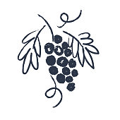istock Hand drawn vine. Drawing the sketch. Vector illustration. 1266726487