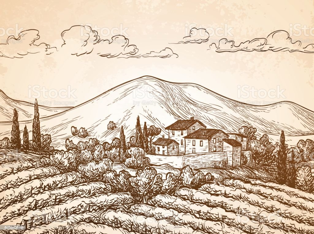 Hand drawn vineyard landscape vector art illustration