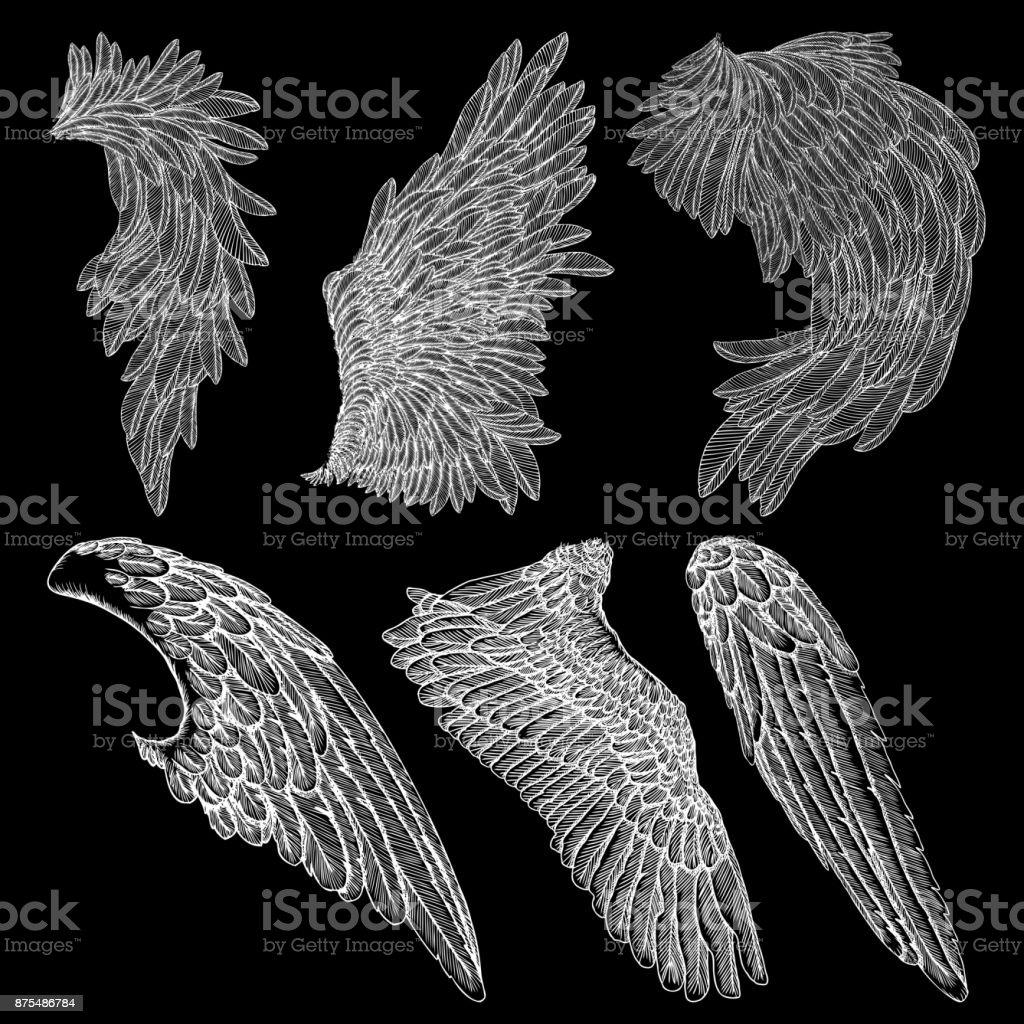 Hand Drawn Vintage Angel Or Bird Wings Set Heraldic Wings For Tattoo