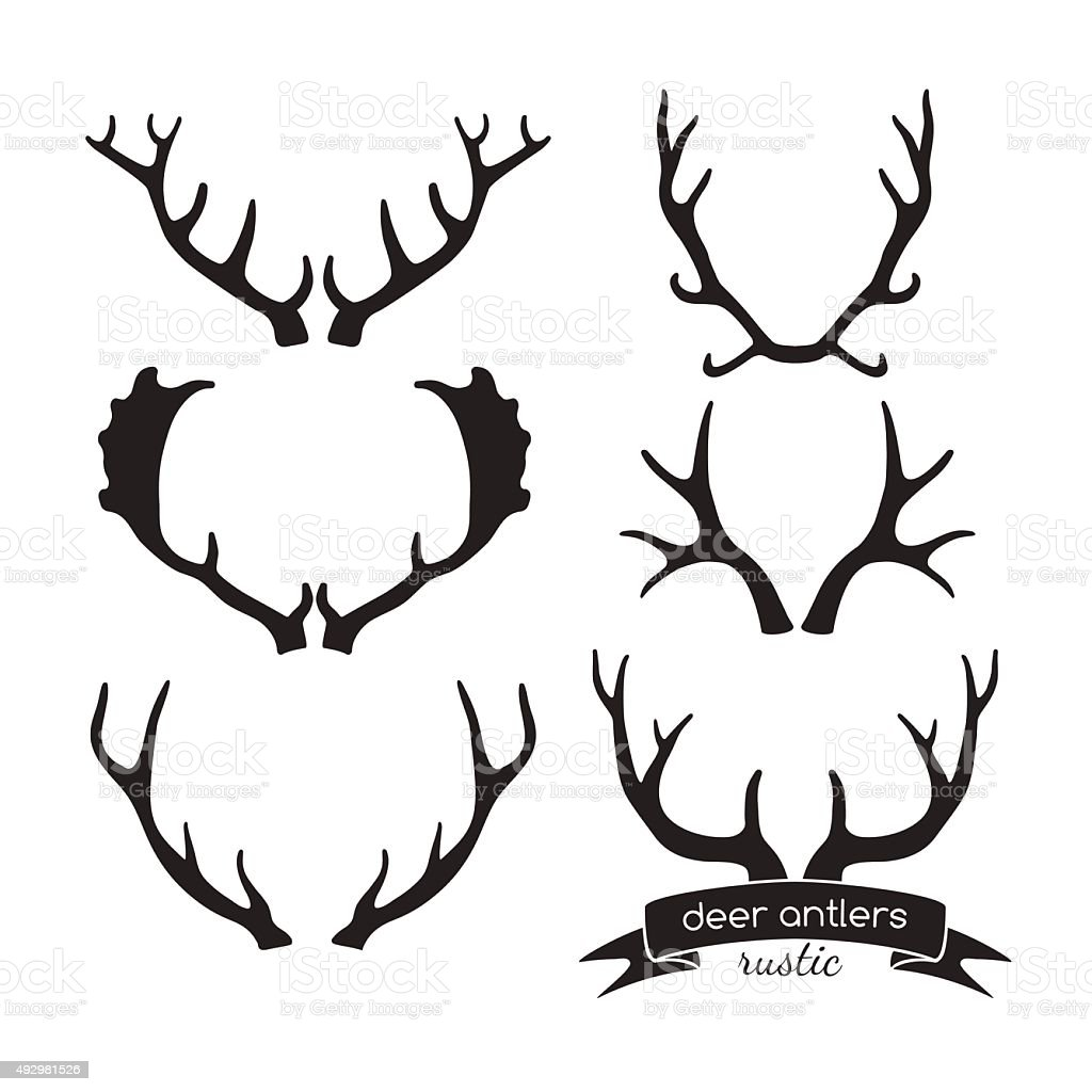 Hand drawn vintage antlers. Rustic decorative vector design elements. vector art illustration