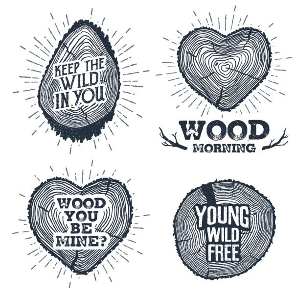 hand drawn vintage badges set with textured tree trunks vector illustrations. - wood texture stock illustrations