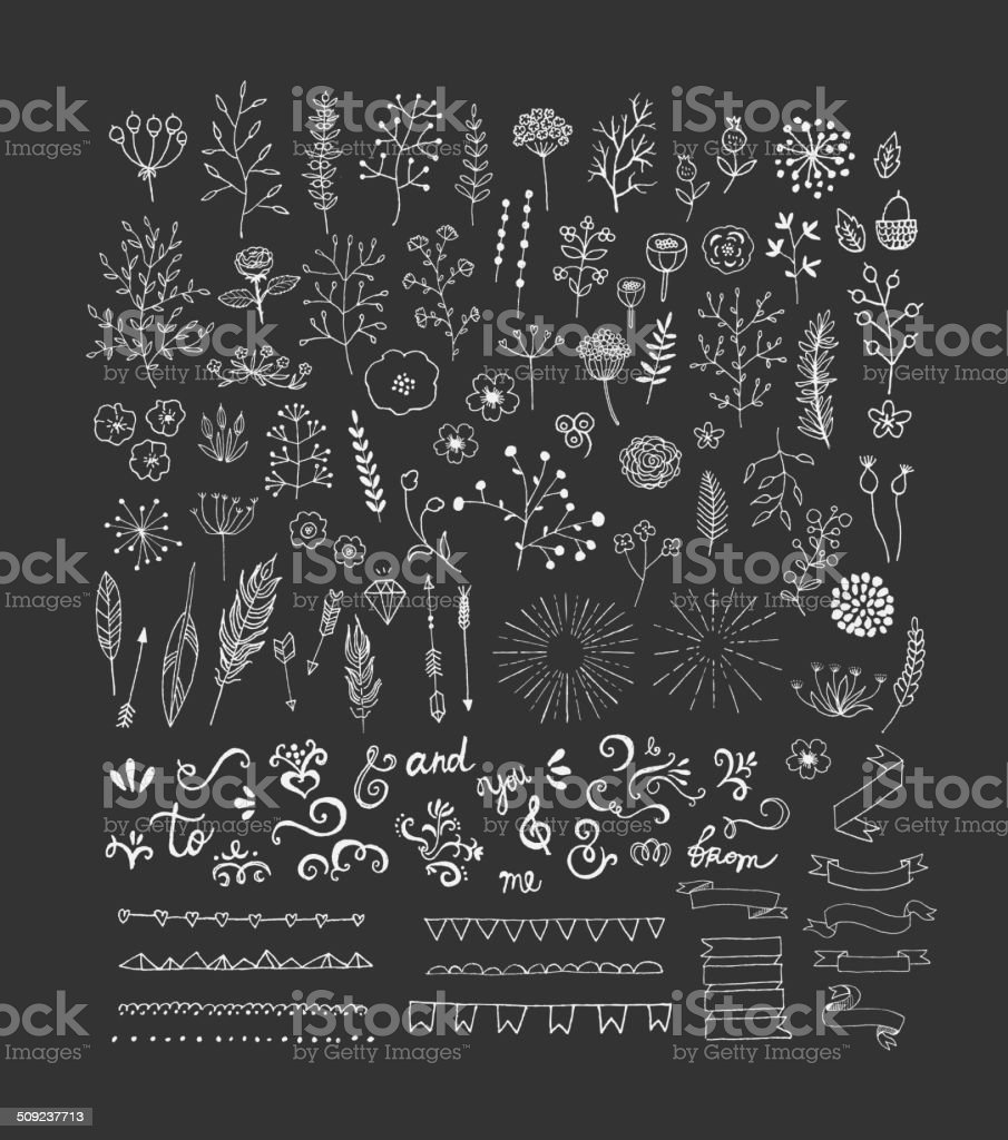 Hand Drawn vintage floral and decor elements. Vector. Isolated. vector art illustration
