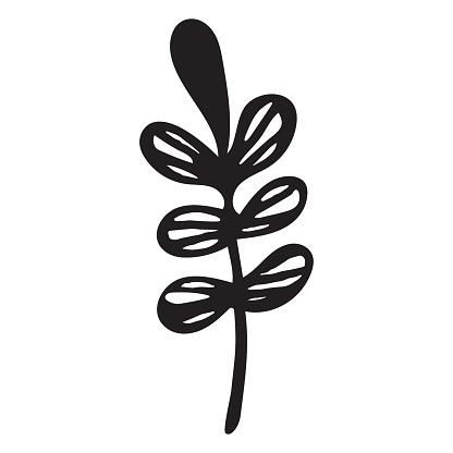 Hand Drawn vintage floral element decorative plant