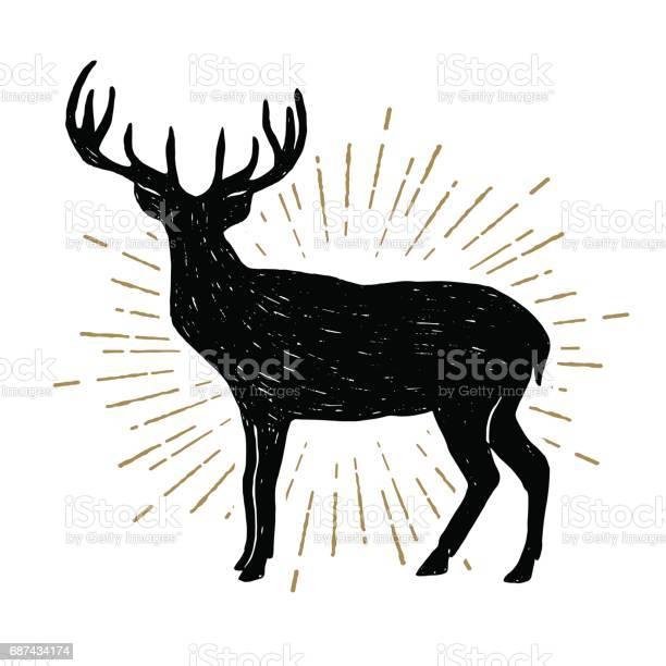 Hand drawn vintage icon with a textured deer vector illustration vector id687434174?b=1&k=6&m=687434174&s=612x612&h= z dgtaffdtigztffzuf8wwbm 8nv8qnb s6wu83os8=