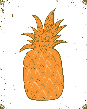 Hand drawn vintage label with pineapple