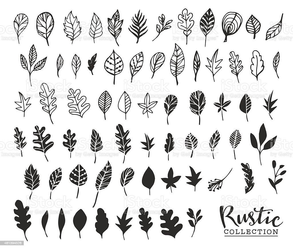 Hand drawn vintage leaves. Rustic decorative vector vector art illustration