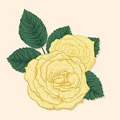 Hand Drawn Vintage Style Flowers. Yellow Roses