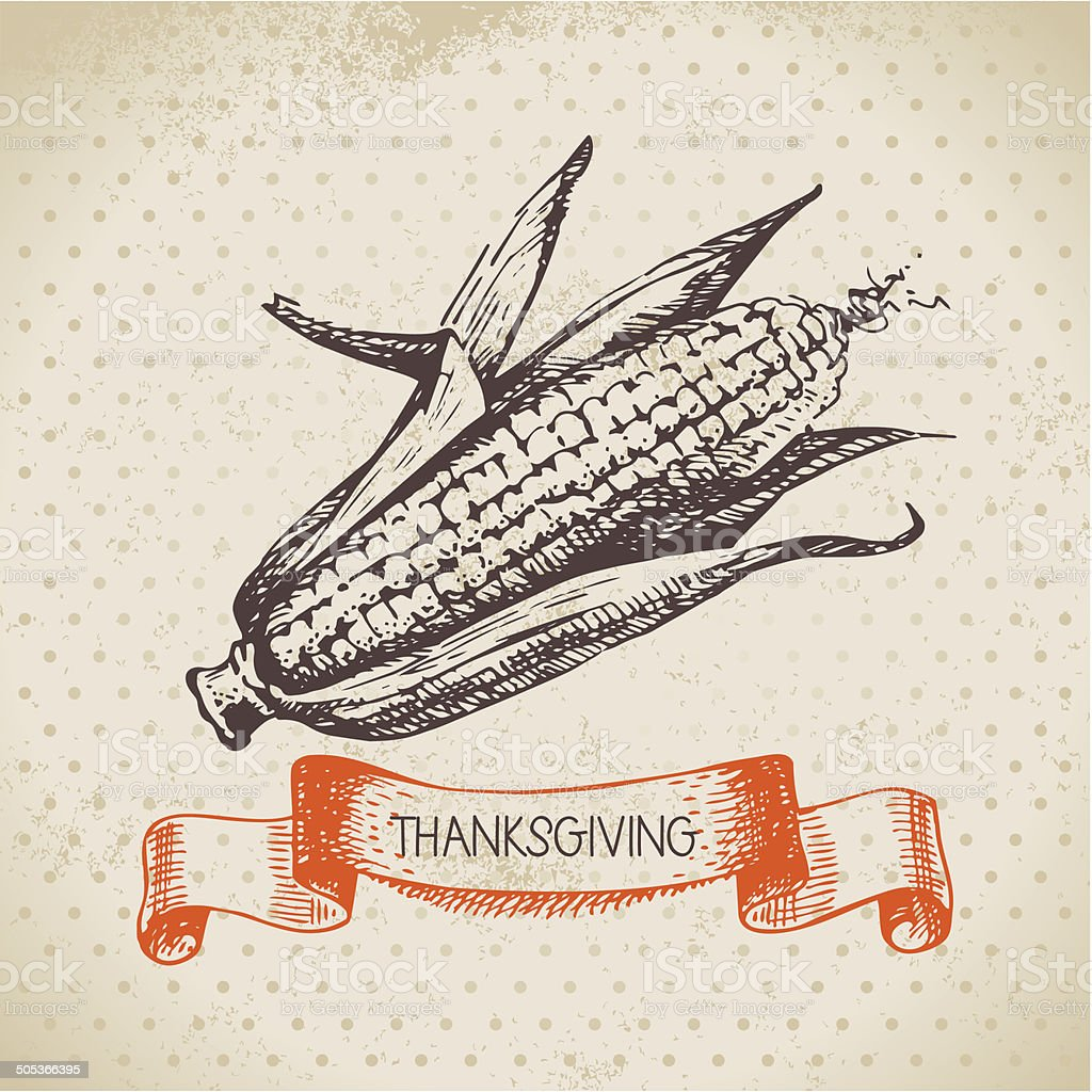 Hand drawn vintage Thanksgiving Day background vector art illustration