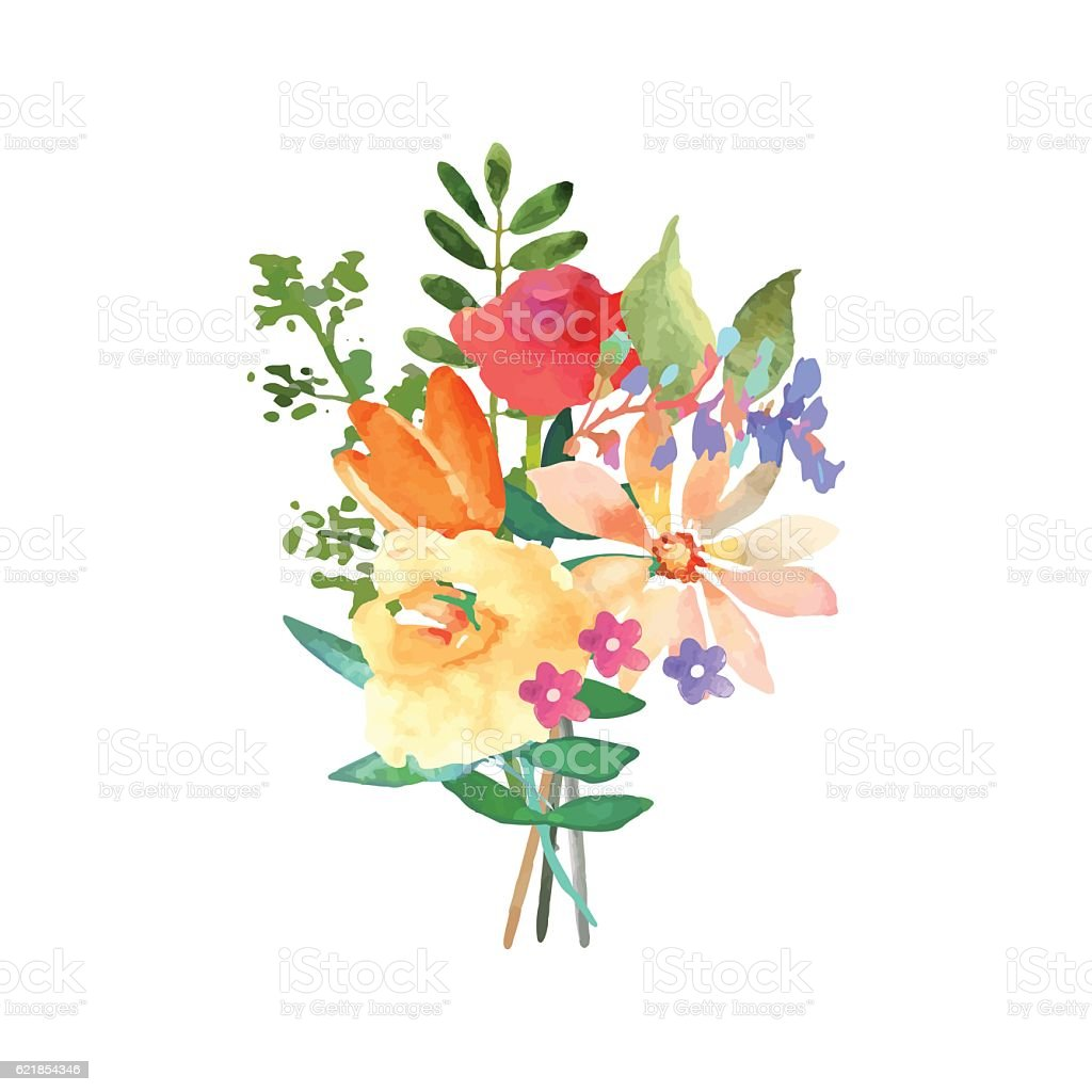 hand drawn watercolor bouquet isolated elements vector
