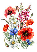 istock Hand Drawn Watercolor Bouquet of Summer Wildflowers 1248309348