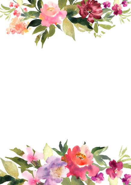 Hand drawn watercolor bouquet on white background. Beautiful gentle flowers in the composition. Roses. Design for card, invitation. Vector. Hand drawn watercolor bouquet on white background. Beautiful gentle flowers in the composition. Roses. Design for card, invitation. Vector flowers stock illustrations