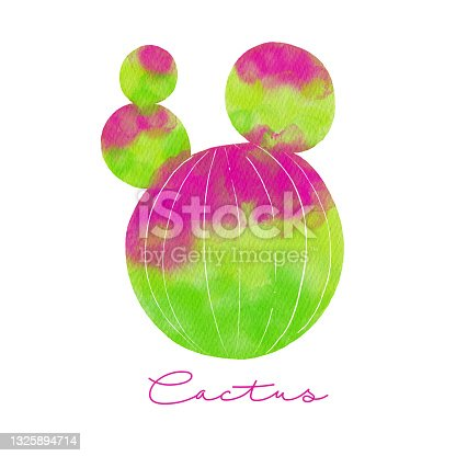 istock Hand Drawn Watercolor Cactus Isolated. Tropical background, tropical design element, summer concept. Party flyer template. Design element for sale banners, posters, labels and invitation cards. 1325894714