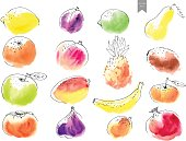 Hand drawn watercolor stains with line art fruit drawings overlayed. Colorful set in simple minimalistic style.