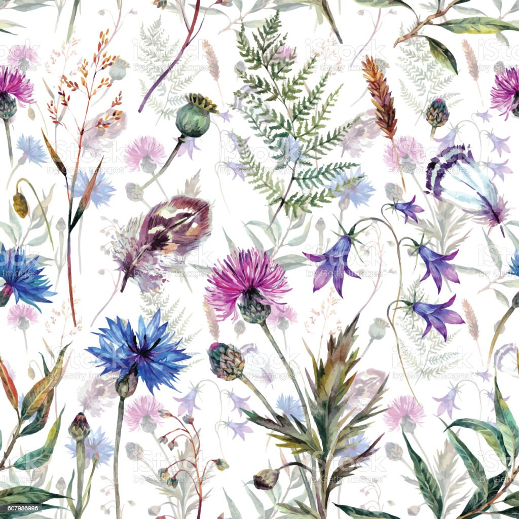Hand drawn watercolor wildflowers – Vektorgrafik