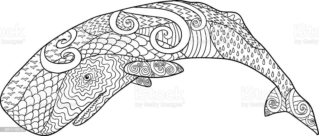 Hand Drawn Whale For Anti Stress Coloring Page Stock Vector Art