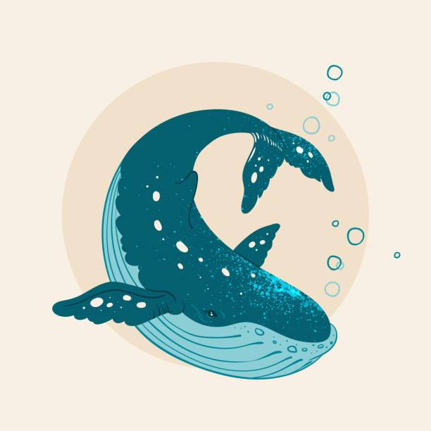 hand gezeichnet wal mit splash - wal stock-grafiken, -clipart, -cartoons und -symbole