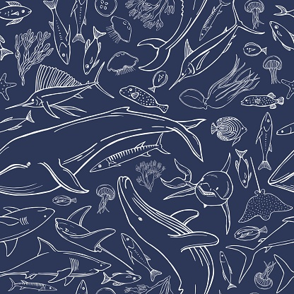 Hand drawn whales and fish. Vector pattern.