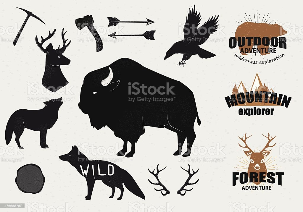 Hand Drawn wild animals and objects set vector art illustration
