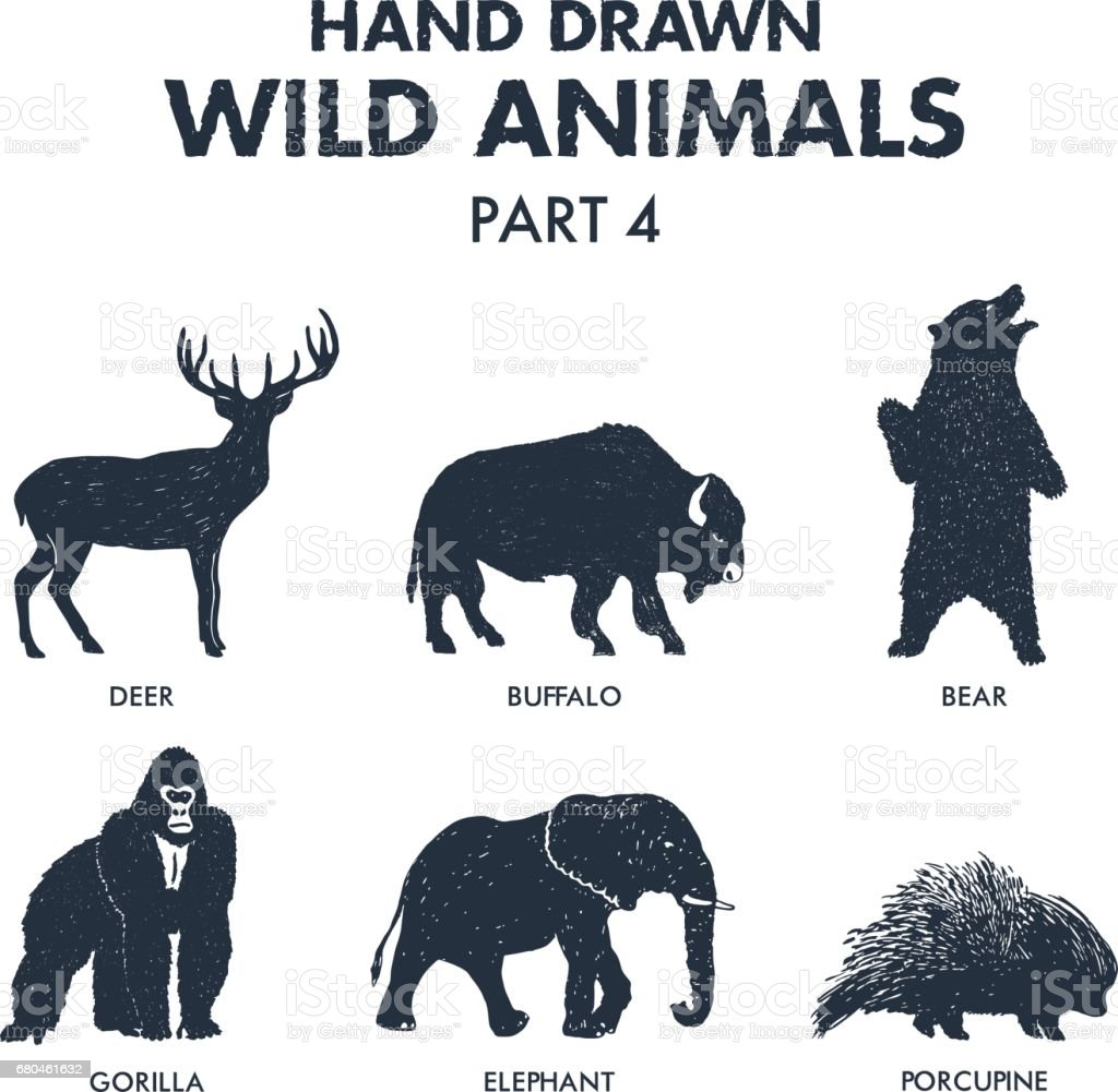Hand drawn wild animals icons set. vector art illustration