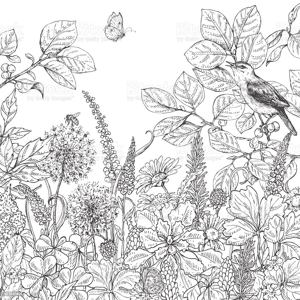 Hand drawn wildflowers, butterfly and bird. vector art illustration