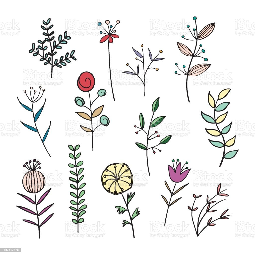 手描きイラストの野の花 アザミのベクターアート素材や画像を多数ご