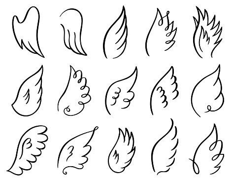 Hand drawn wings. Doodle sketch angel flight feather, angels or birds elegant wings spread, winged angel elements vector illustration icons set