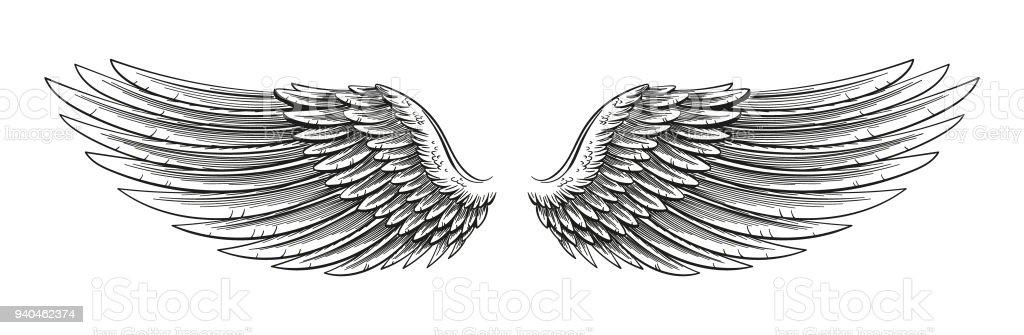 Hand Drawn Wings vector art illustration
