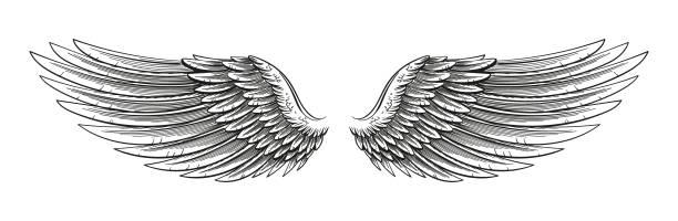 hand drawn wings - engel tattoos stock-grafiken, -clipart, -cartoons und -symbole