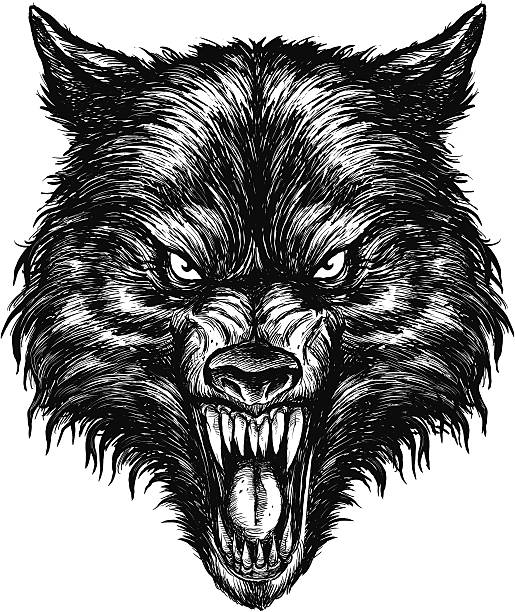 Best Wolf Teeth Illustrations, Royalty-Free Vector Graphics