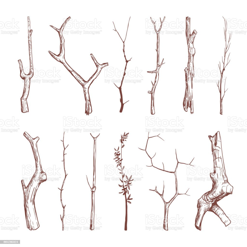 Hand drawn wood twigs, wooden sticks, tree branches vector rustic decoration elements - illustrazione arte vettoriale