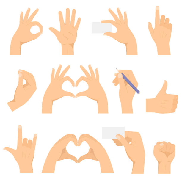ustawiono gesty dłoni. ręce wykonać gest. pokazuje ok, serce, kciuk w górę, rogi, pięść, palec wskazujący, trzyma wizytówkę i ołówek. - ręka człowieka stock illustrations
