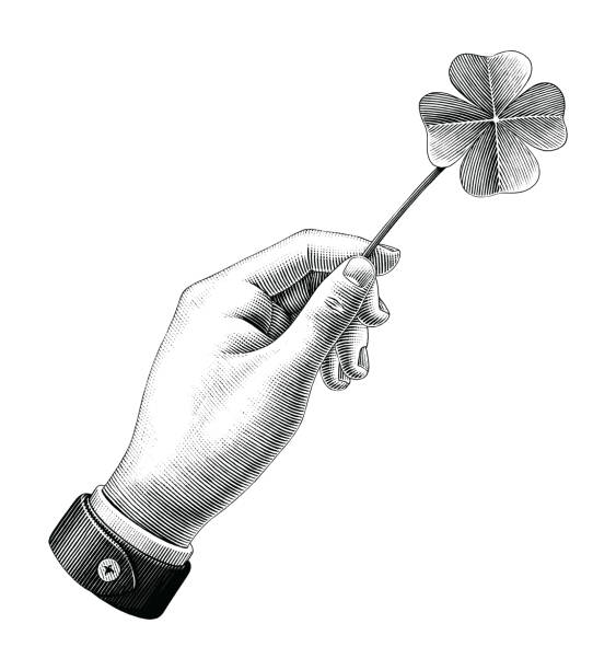 hand hold clover leaf drawing vintage style black and white clipart isolated on white background - four seasons stock illustrations