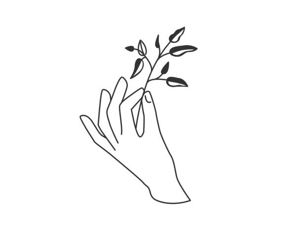 Hand hold floral twig plant with leaves. Vector illustration in simple flat line style vector art illustration