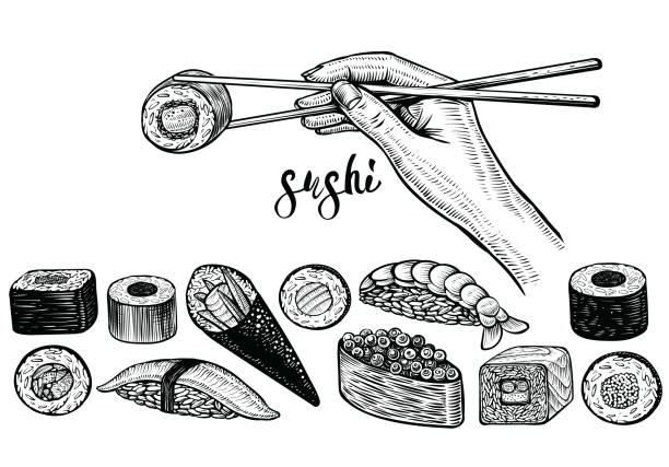 hand holding chopsticks and sushi roll, vector line drawing. japanese food species. - sushi stock illustrations