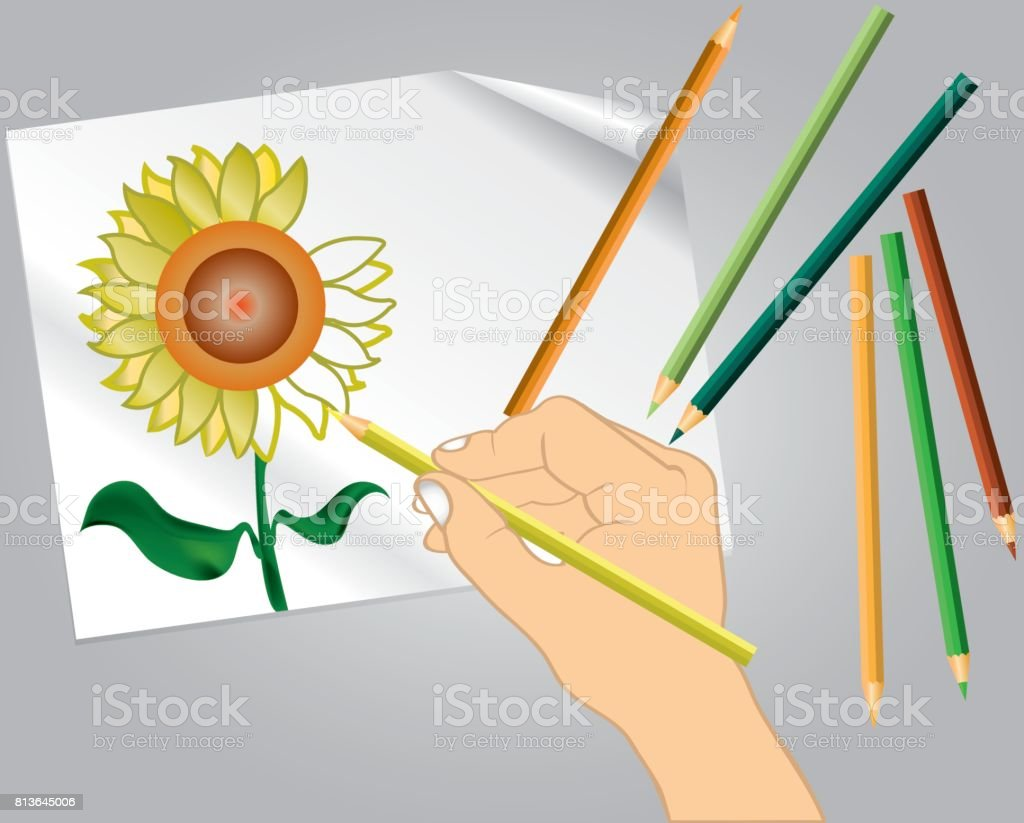 Hand Holding Color Pencil Drawing Sunflower Stock Vector Art More