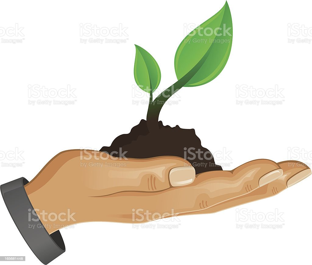 Hand holding fresh green sprout royalty-free stock vector art