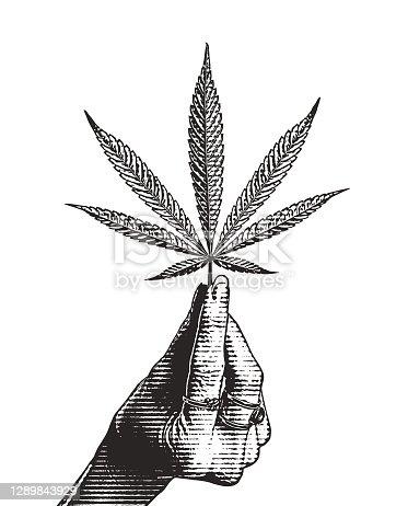 istock Hand holding hemp leaf 1289843929