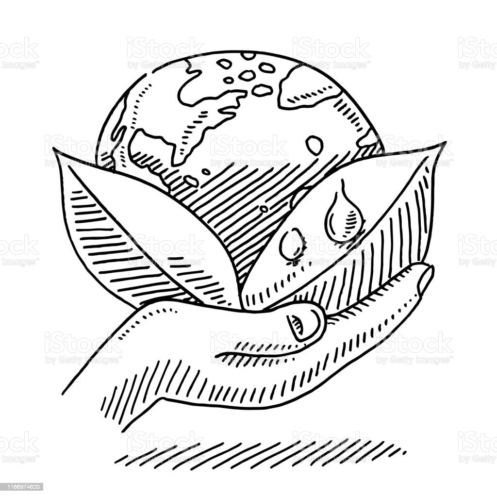 Hand-drawn vector drawing of a Hand Holding Leaves And Planet Earth....