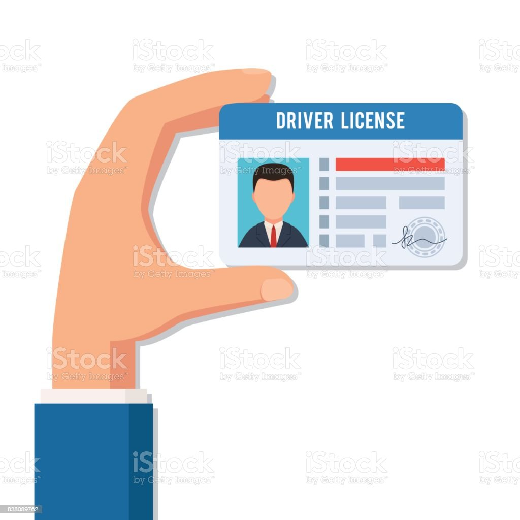 Hand holds a driver license vector art illustration