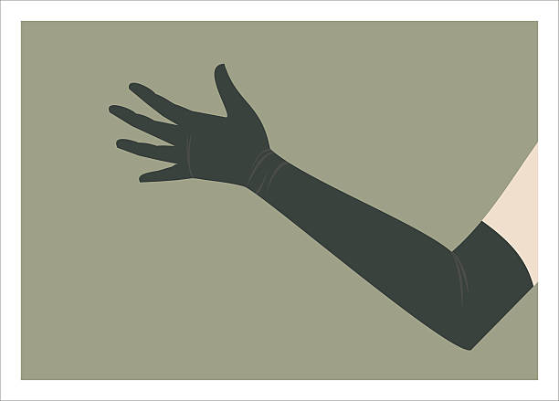 hand in long glove simple illustration of long glove formal glove stock illustrations