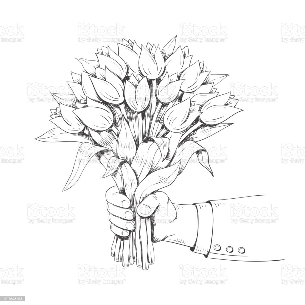 Hand Is Holding A Bouquet Of Tulips Vector Illustration ...