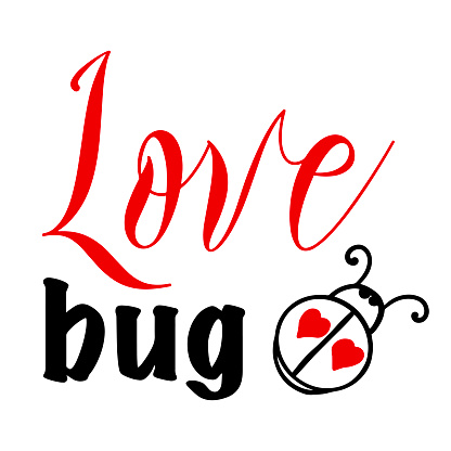 Hand lettering quote for baby Love bug for Valentines day. Vector calligraphy illustration in red and black on white with ladybird or ladybug. Perfect for babysuit, tshirt, print, sticker, photo album