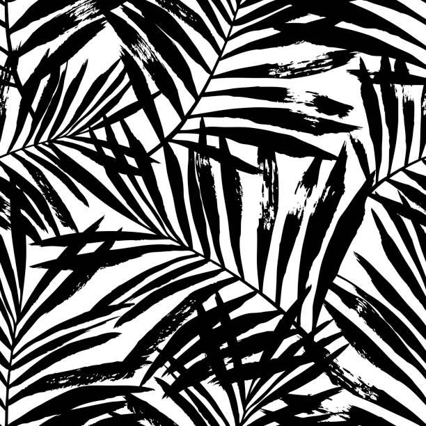 illustrazioni stock, clip art, cartoni animati e icone di tendenza di hand painted black vector palm leaves. - bianco e nero