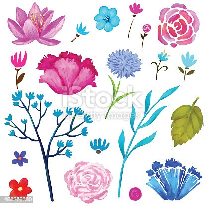 Hand painted floral watercolor set, various flowers and leaves isolated on a white background. Art design elements, clip art - vector artwork