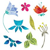 Hand painted floral watercolor set, different flowers and leaves isolated on a white background. Art design elements, clip art - vector artwork