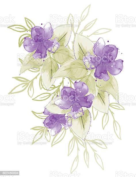 Hand painted watercolor flowers bouquet vector id502450004?b=1&k=6&m=502450004&s=612x612&h=fwqr9ez56lf4jgnjrylzopcanj5uoaxhqsel2pkkwqo=