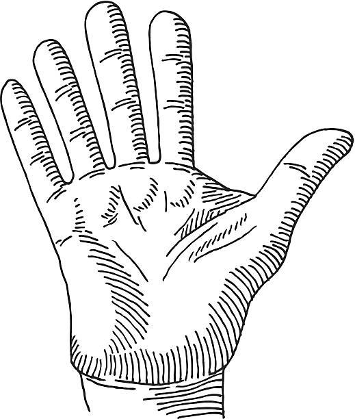 hand palm stopp-geste zeichnung - farbwahrnehmung stock-grafiken, -clipart, -cartoons und -symbole